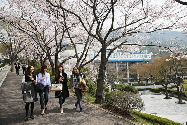 Môi trường sống ở Hàn Quốc